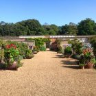 Holkham Walled Gardens 2