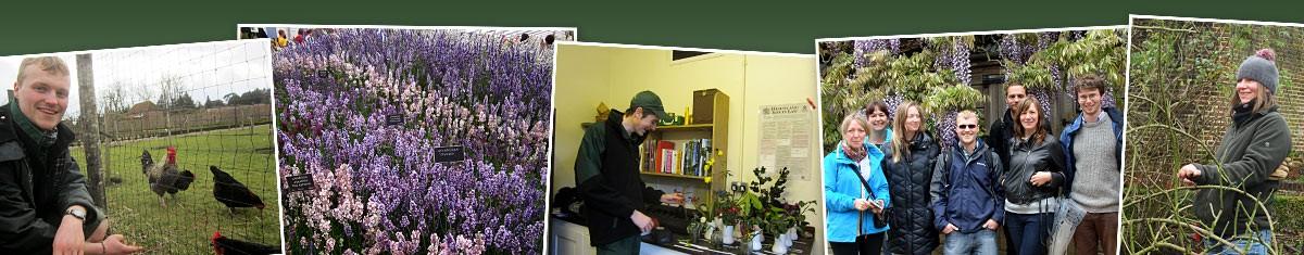 Historic & Botanic Gardens Bursary Scheme Trainee Experience