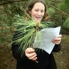 Bodnant trainee plant ident