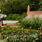 Calke Abbey_Susan Guy _Physic_Garden