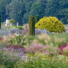 Trentham Gardens July 14