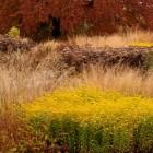 Trentham_2016 Autumn
