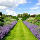 Houghton garden pic 6