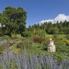 Killerton Garden pic 5
