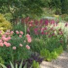 Beth Chatto Gardens (3)_compressed