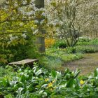 Beth Chatto Gardens (5)_compressed