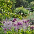 Beth Chatto Gardens (9)_compressed
