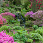 Bodnant Garden - Hillside and Waterfall in the Dell