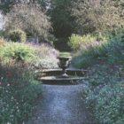Newby 6_Autumn garden